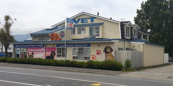Upper Hutt Veterinary Hospital and Cattery