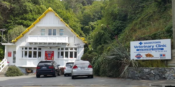 Wadestown Veterinary Clinic